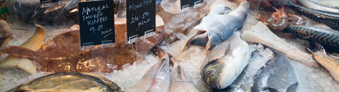 Selection of fish for sale